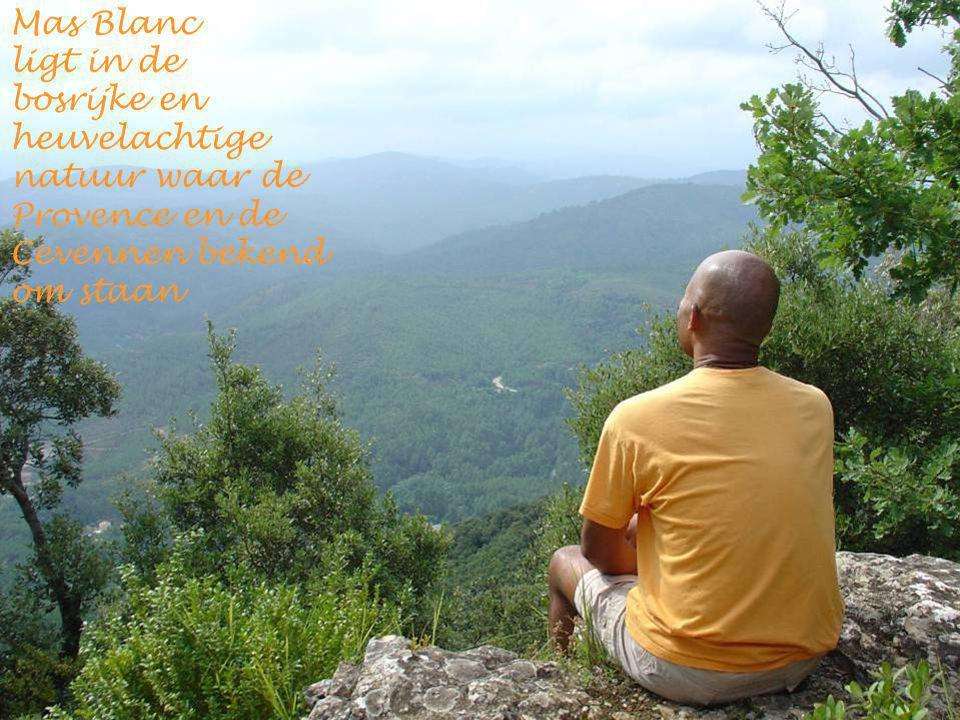 Mas Blanc ligt in de bosrijke en heuvelachtige natuur waar de Provence en de Cevennen bekend om staan