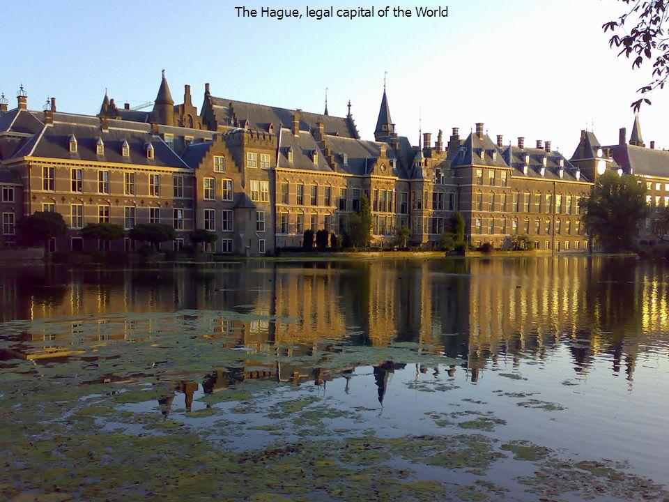Rijksuniversiteit Groningen 14 September 2008 Prof. Dr. G.A.M. Strijards 14 The Hague, legal capital of the World