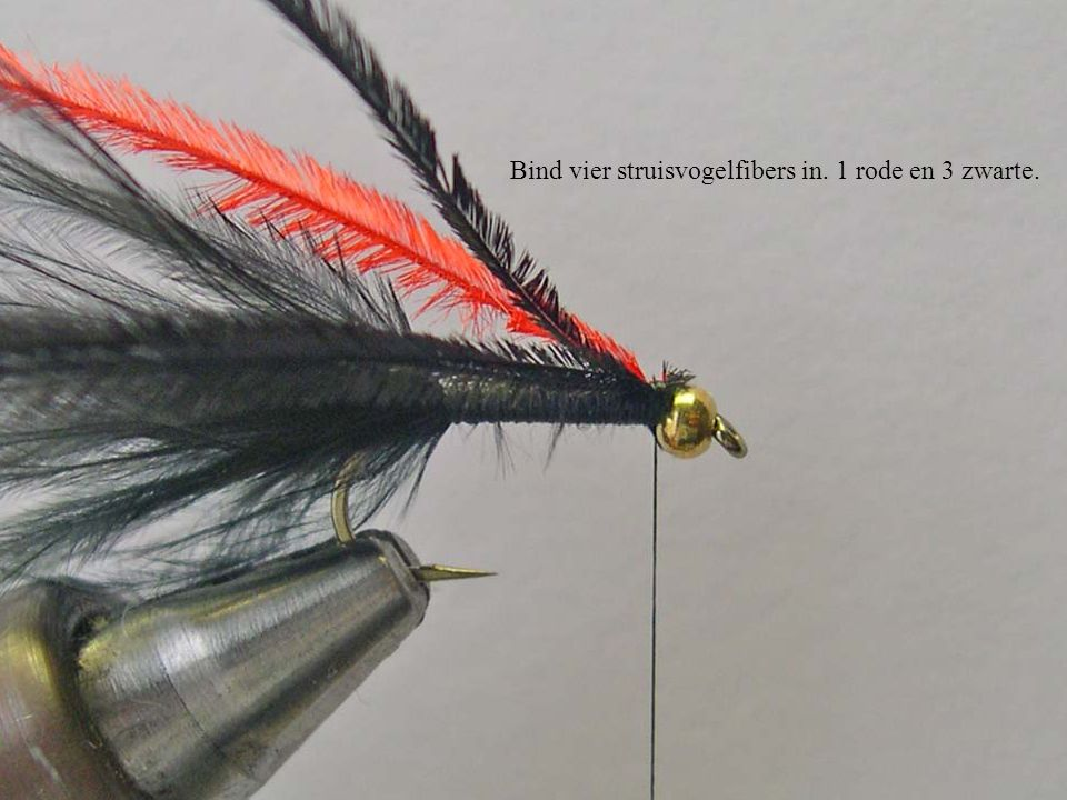 Bind vier struisvogelfibers in. 1 rode en 3 zwarte.