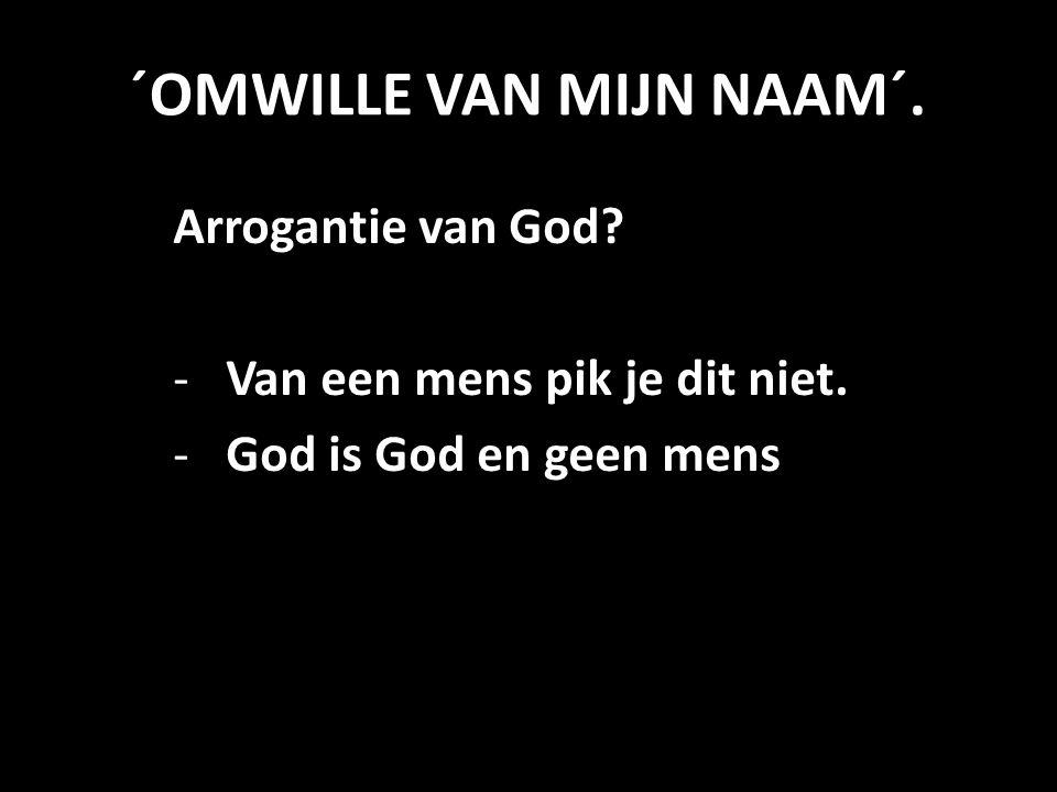 ´OMWILLE VAN MIJN NAAM´. Arrogantie van God? -Van een mens pik je dit niet. -God is God en geen mens