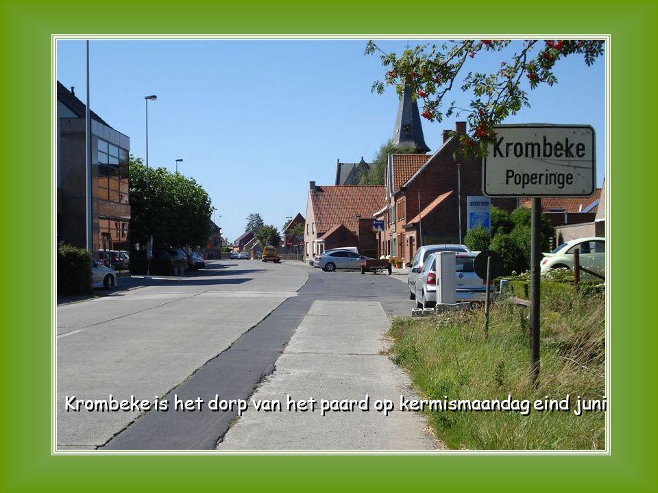 De Puydebroeken gelegen tussen Elzendamme en Westvleteren De Puydebroeken gelegen tussen Elzendamme en Westvleteren