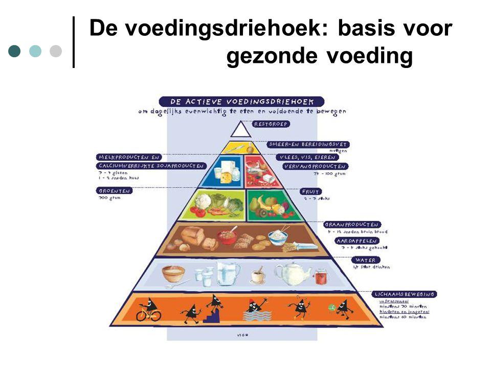 De voedingsdriehoek: basis voor gezonde voeding