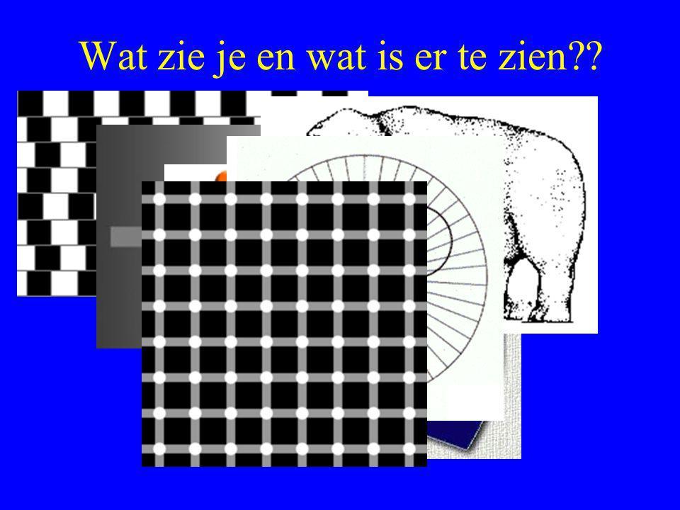 Wat zie je en wat is er te zien??