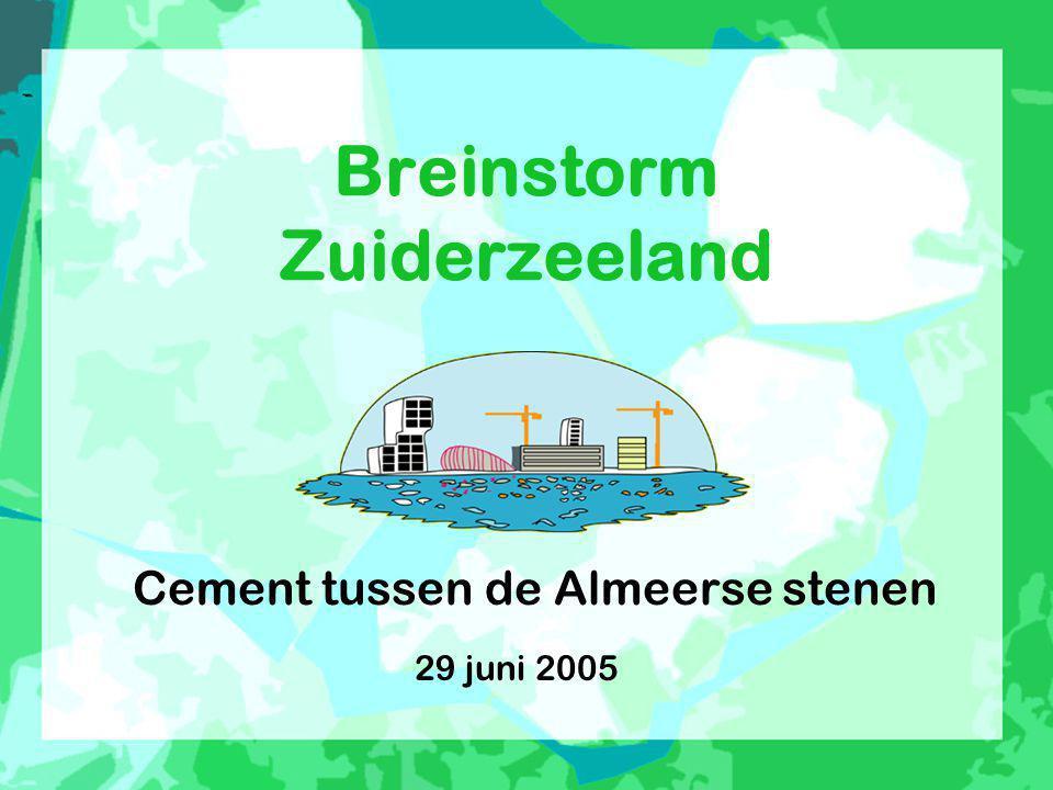 Breinstorm Zuiderzeeland Cement tussen de Almeerse stenen 29 juni 2005