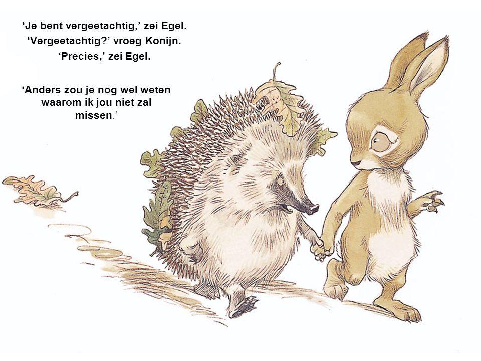'Ik zal je missen,' zei konijn. 'Zul jij mij missen?' 'Nee,' zei Egel. 'Ik jou wel,' zei Konijn 'Weet ik,' zei Egel. 'Dat heb je net al gezegd.'