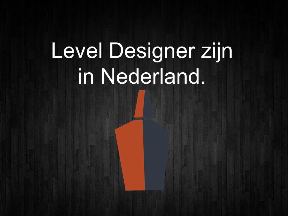 Level Designer zijn in Nederland.