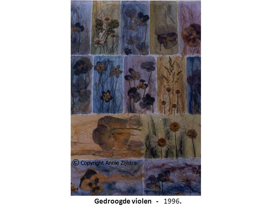 Gedroogde violen - 1996.