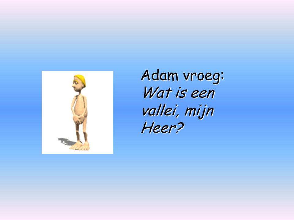 Adam vroeg: Wat is een vallei, mijn Heer