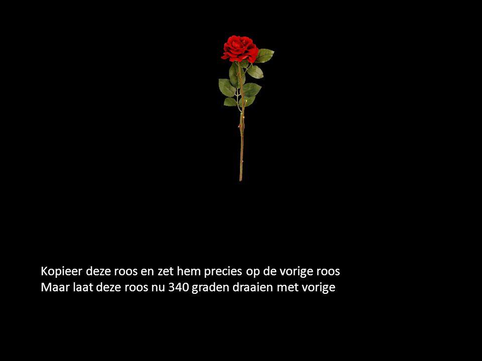 Kopieer deze roos en zet hem precies op de vorige roos Maar laat deze roos nu 340 graden draaien met vorige