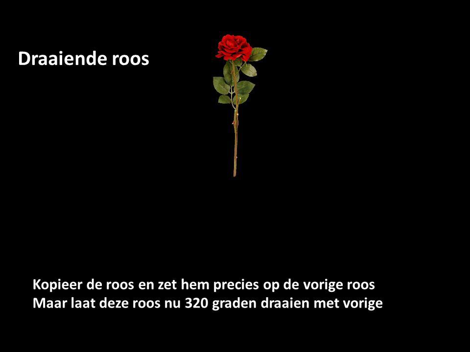 Kopieer de roos en zet hem precies op de vorige roos Maar laat deze roos nu 320 graden draaien met vorige Draaiende roos