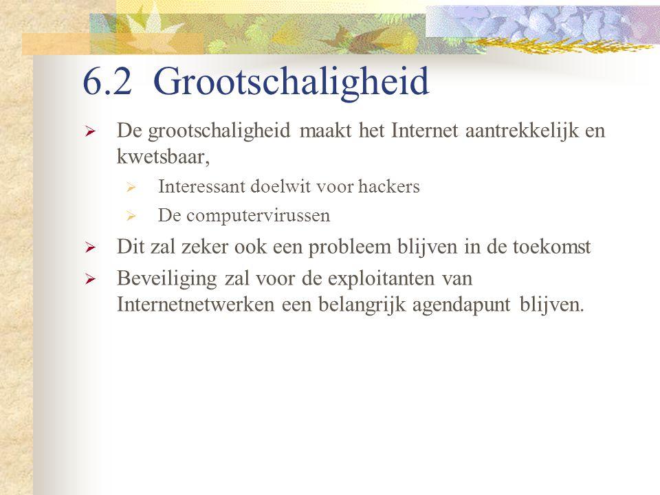 6.2 Grootschaligheid  De grootschaligheid maakt het Internet aantrekkelijk en kwetsbaar,  Interessant doelwit voor hackers  De computervirussen  D