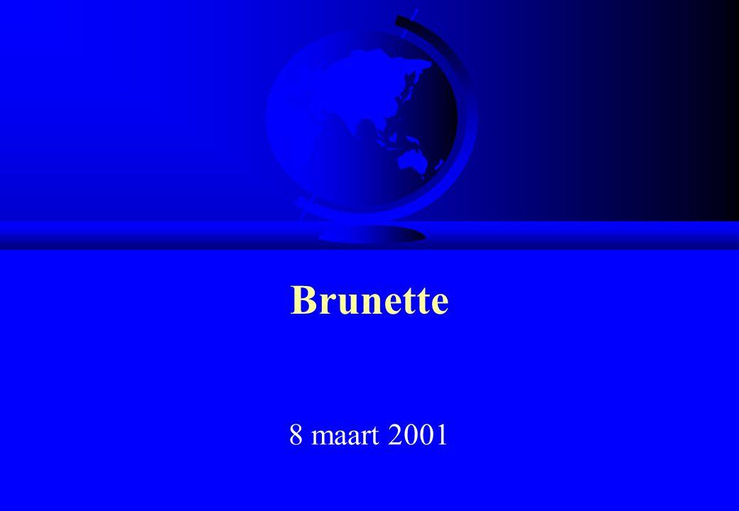 Het E-mail adres F Het adres van een gebruiker heeft steeds deze vorm :  naam-gebruiker@computer F Voorbeelden :  nathalie.messori@brunette.brucity.be  nathalie.messori@skynet.be