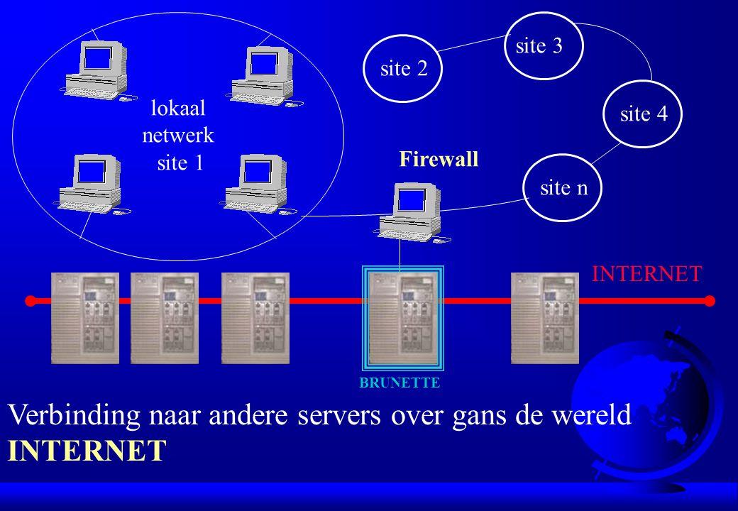 lokaal netwerk site 1 site 2 site 3 site 4 site n Firewall Verbinding naar andere servers over gans de wereld INTERNET BRUNETTE INTERNET