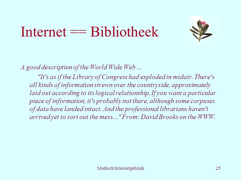 Medisch Internetgebruik25 Internet == Bibliotheek A good description of the World Wide Web...