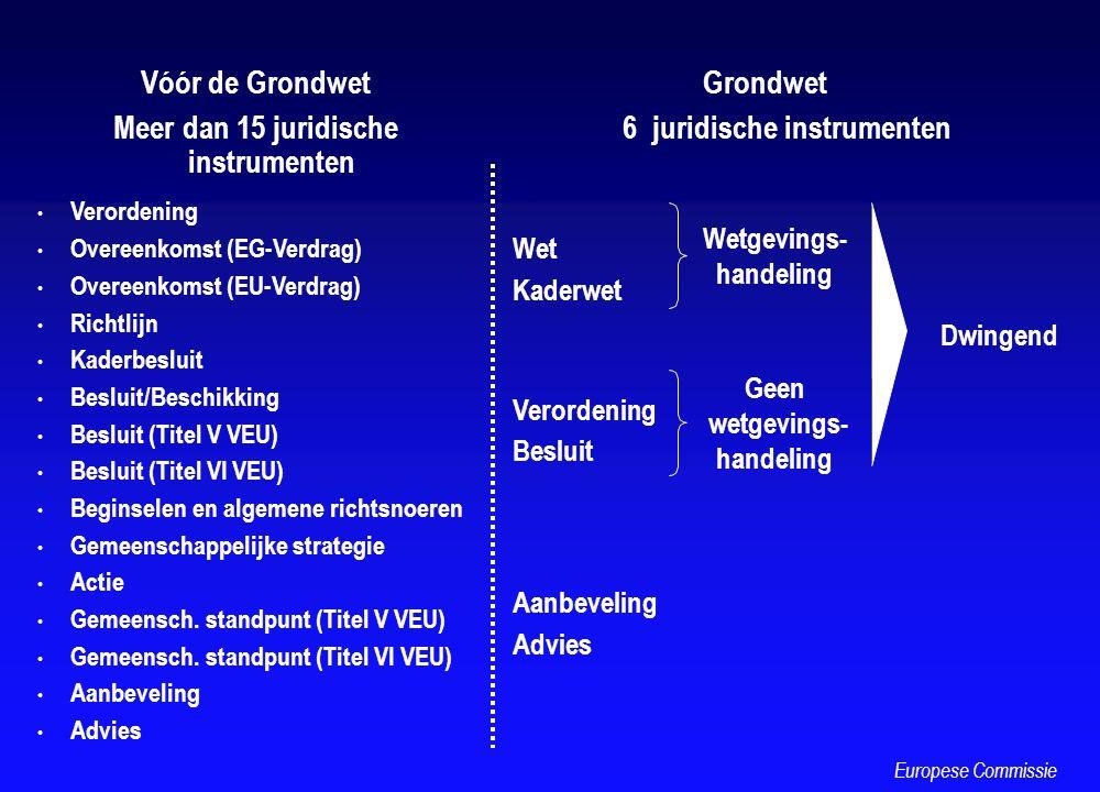 Vóór de Grondwet Meer dan 15 juridische instrumenten Verordening Overeenkomst (EG-Verdrag) Overeenkomst (EU-Verdrag) Richtlijn Kaderbesluit Besluit/Be