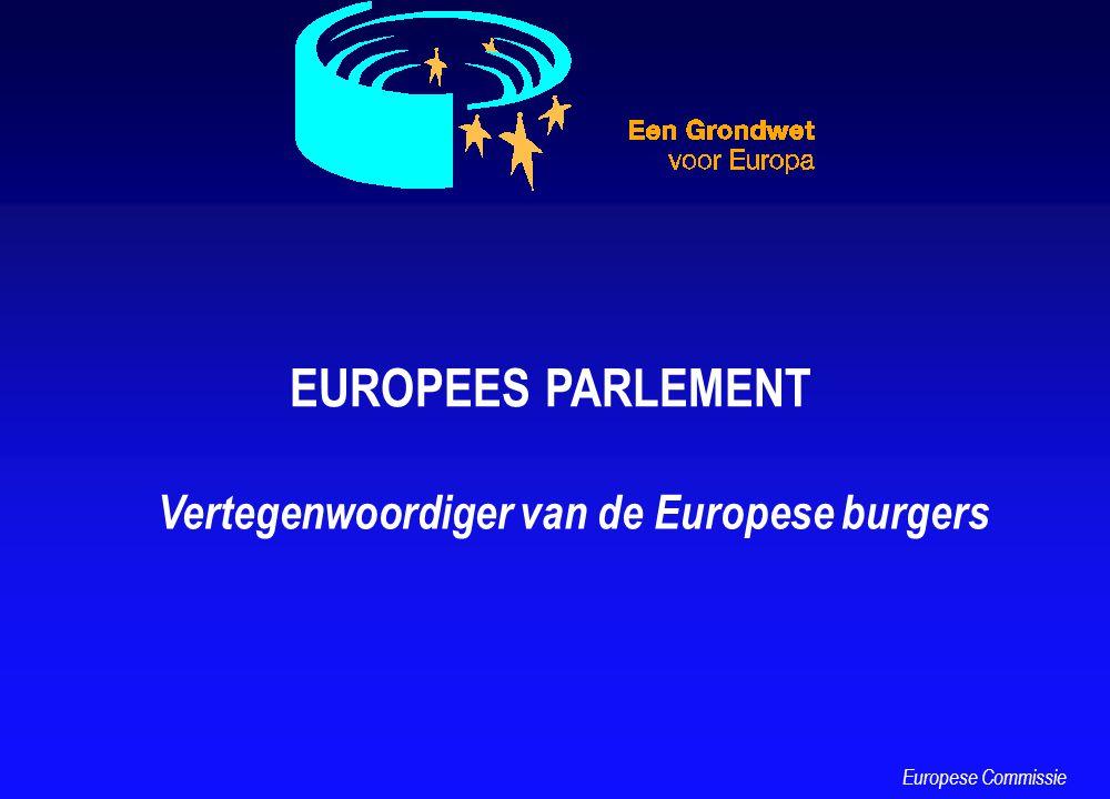 EUROPEES PARLEMENT Vertegenwoordiger van de Europese burgers Europese Commissie