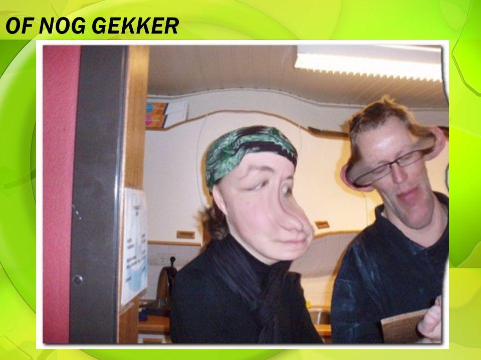 OF NOG GEKKER