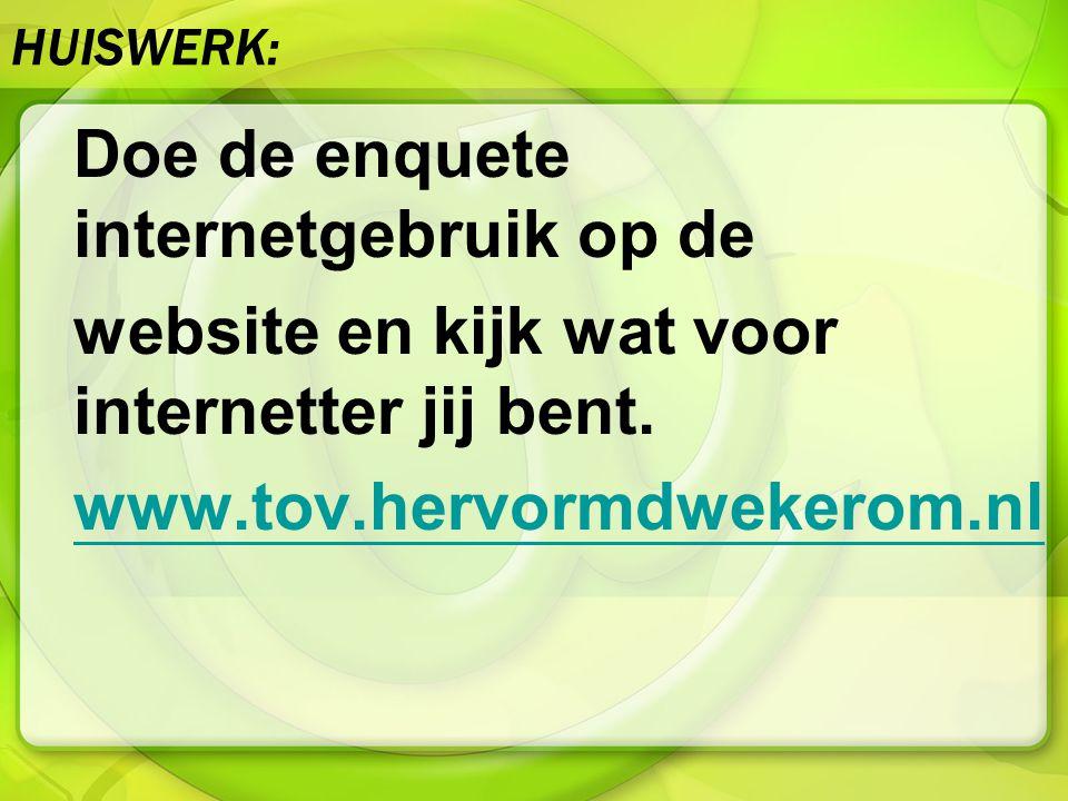HUISWERK: Doe de enquete internetgebruik op de website en kijk wat voor internetter jij bent. www.tov.hervormdwekerom.nl