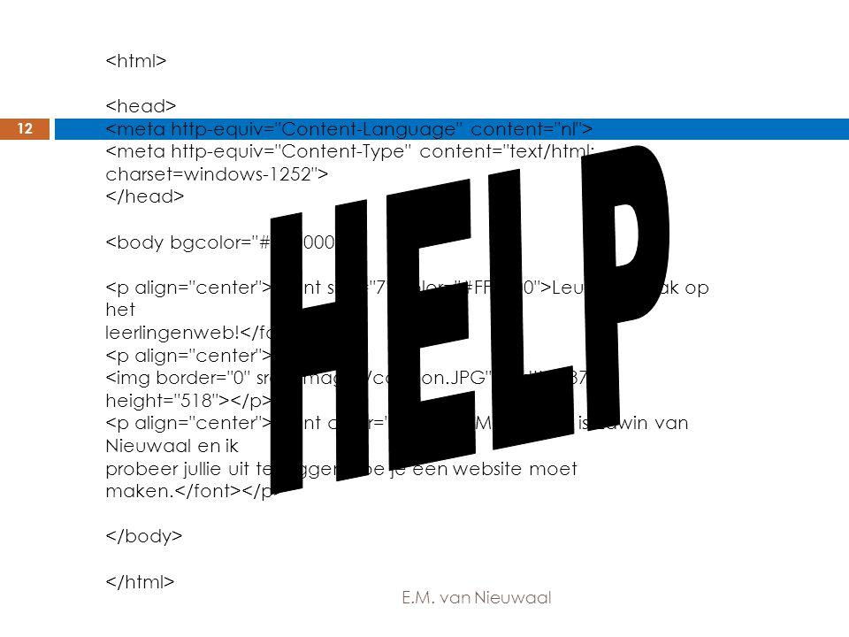 Leuk, mijn vak op het leerlingenweb! Mijn naam is Edwin van Nieuwaal en ik probeer jullie uit te leggen hoe je een website moet maken. 12 E.M. van Nie