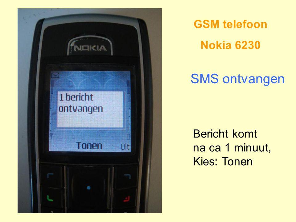 GSM telefoon Nokia 6230 SMS ontvangen Bericht komt na ca 1 minuut, Kies: Tonen