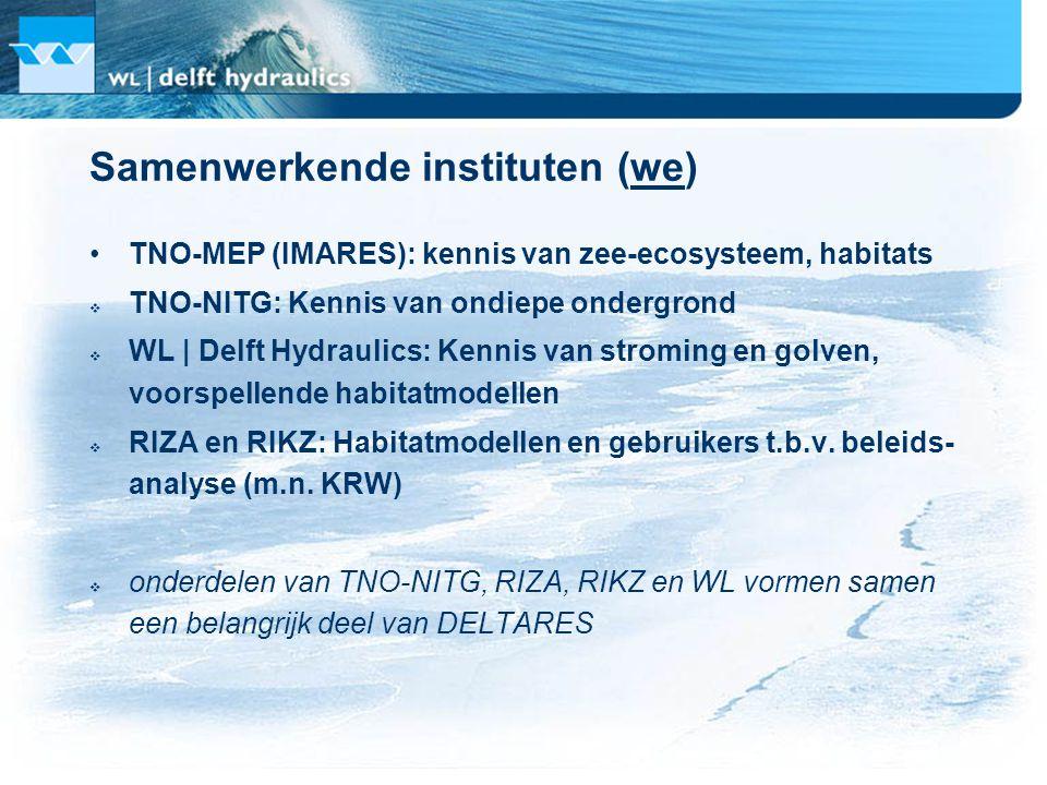 Te bundelen kennis TNO-MEP (IMARES): analyse van ecologische meetcampagnes en monitoringprogramma's Noordzee TNO-NITG: fysische zeebodemparameters WL: numerieke modellen, coördinatie koppelen databases RIZA en RIKZ: Habitatmodellen, bijdrage aan cases en als gebruikers aansturen van producten