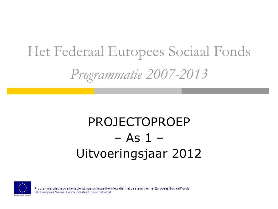 Het Federaal Europees Sociaal Fonds Programmatie 2007-2013 PROJECTOPROEP – As 1 – Uitvoeringsjaar 2012 Programmatorische overheidsdienst maatschappelijke integratie, met de steun van het Europees Sociaal Fonds Het Europees Sociaal Fonds investeert in uw toekomst