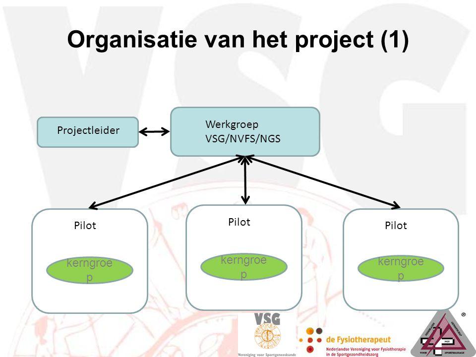 Organisatie van het project (1) kerngroe p Pilot kerngroe p Pilot kerngroe p Pilot Projectleider Werkgroep VSG/NVFS/NGS