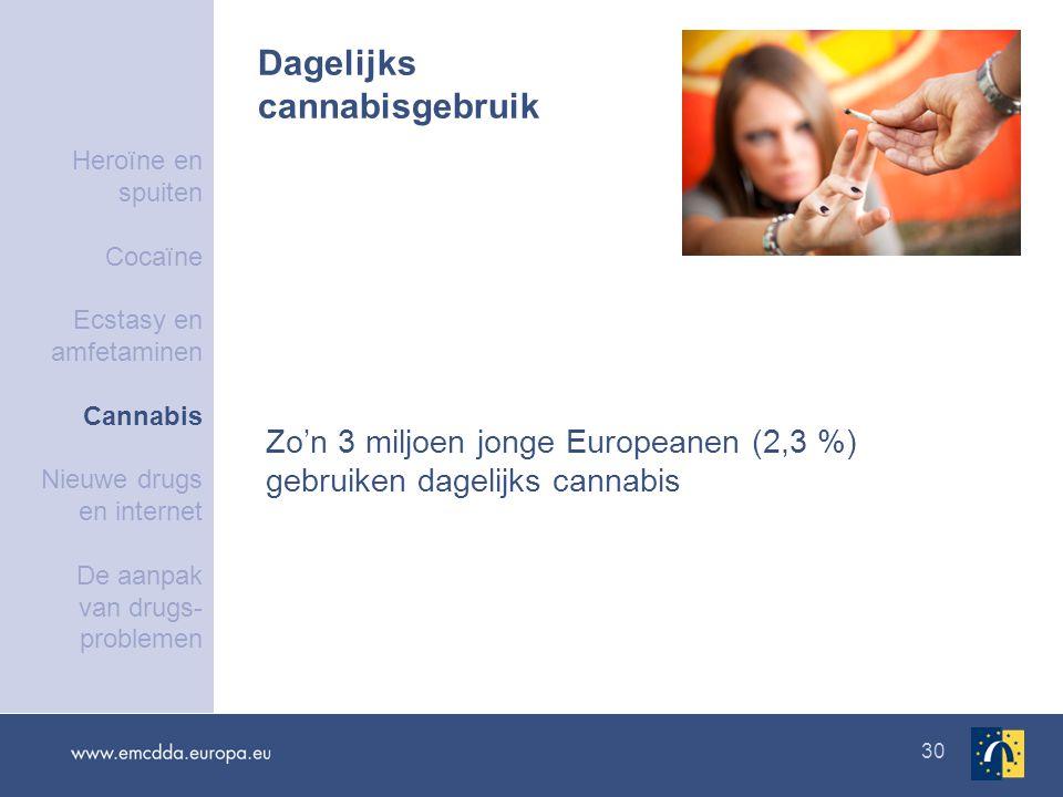 30 Dagelijks cannabisgebruik Zo'n 3 miljoen jonge Europeanen (2,3 %) gebruiken dagelijks cannabis Heroïne en spuiten Cocaïne Ecstasy en amfetaminen Cannabis Nieuwe drugs en internet De aanpak van drugs- problemen