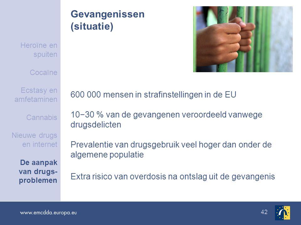 42 Gevangenissen (situatie) 600 000 mensen in strafinstellingen in de EU 10−30 % van de gevangenen veroordeeld vanwege drugsdelicten Prevalentie van drugsgebruik veel hoger dan onder de algemene populatie Extra risico van overdosis na ontslag uit de gevangenis Heroïne en spuiten Cocaïne Ecstasy en amfetaminen Cannabis Nieuwe drugs en internet De aanpak van drugs- problemen
