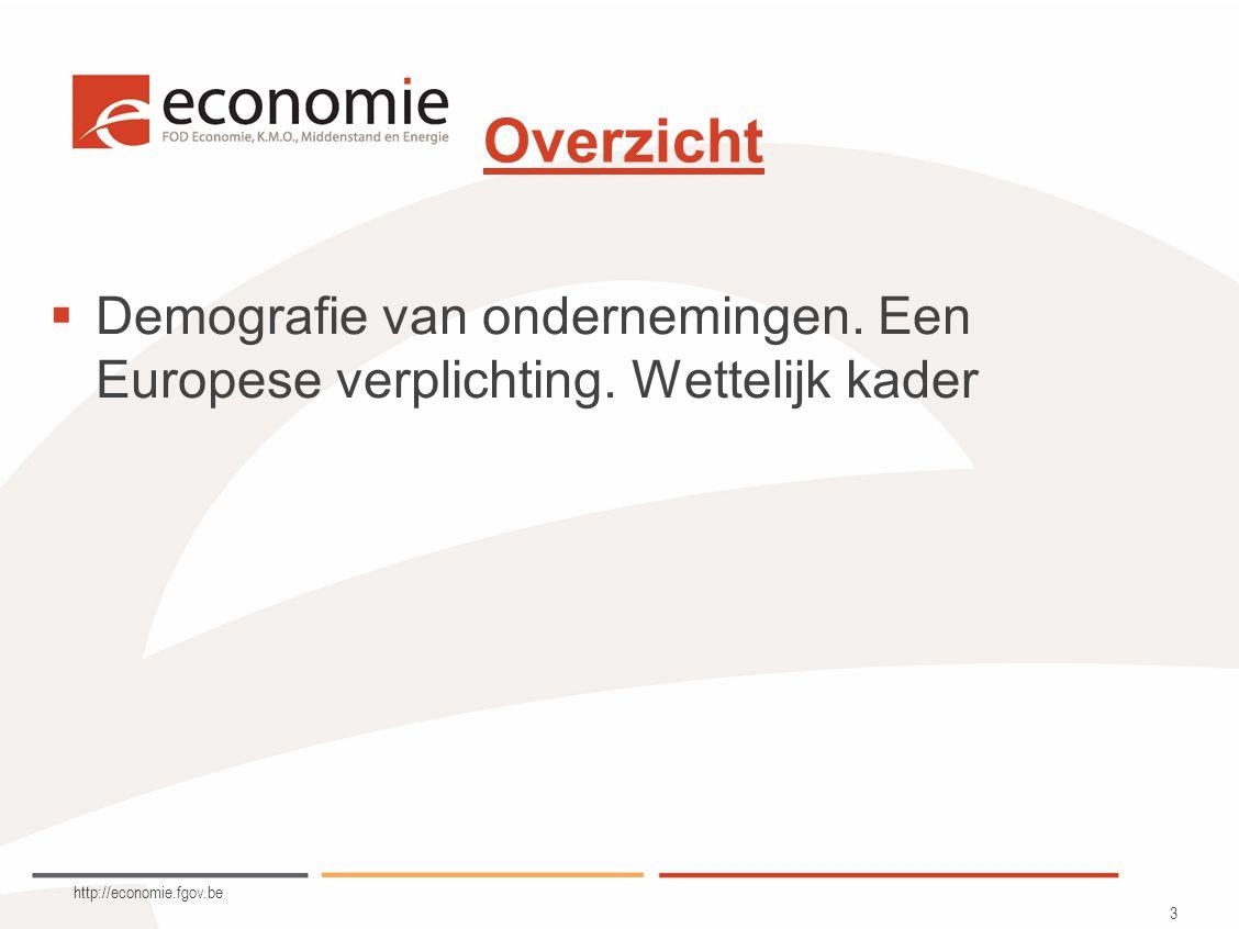 http://economie.fgov.be 3 Overzicht  Demografie van ondernemingen.
