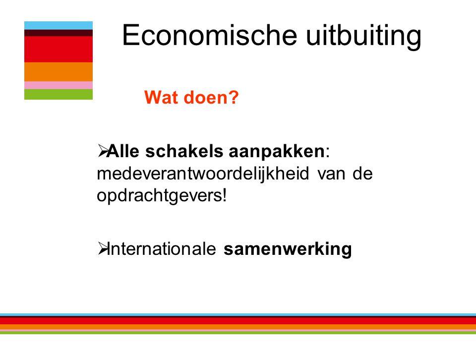 Economische uitbuiting Wat doen?  Alle schakels aanpakken: medeverantwoordelijkheid van de opdrachtgevers!  Internationale samenwerking
