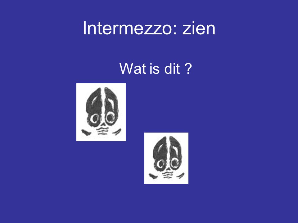 Intermezzo: zien Wat is dit ?