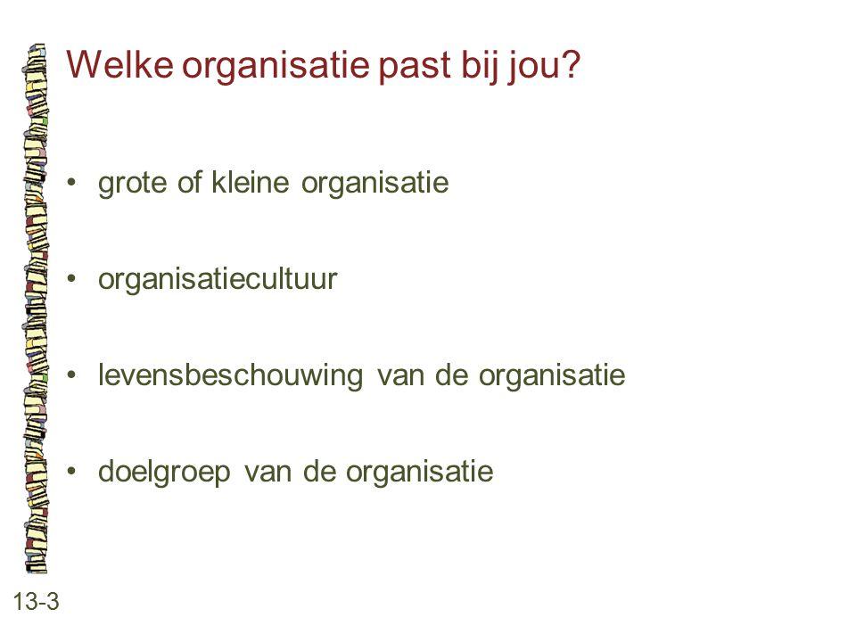 Welke organisatie past bij jou? 13-3 grote of kleine organisatie organisatiecultuur levensbeschouwing van de organisatie doelgroep van de organisatie