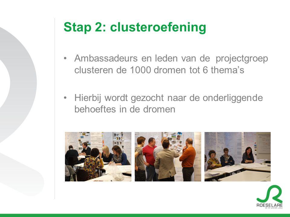 Stap 2: clusteroefening Ambassadeurs en leden van de projectgroep clusteren de 1000 dromen tot 6 thema's Hierbij wordt gezocht naar de onderliggende behoeftes in de dromen