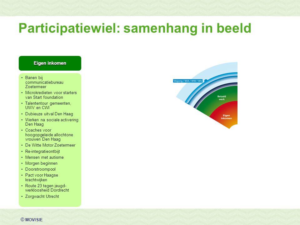© MOVISIE Eigen inkomen Banen bij communicatiebureau Zoetermeer Microkredieten voor starters van Start foundation Talententour gemeenten, UWV en CWI D
