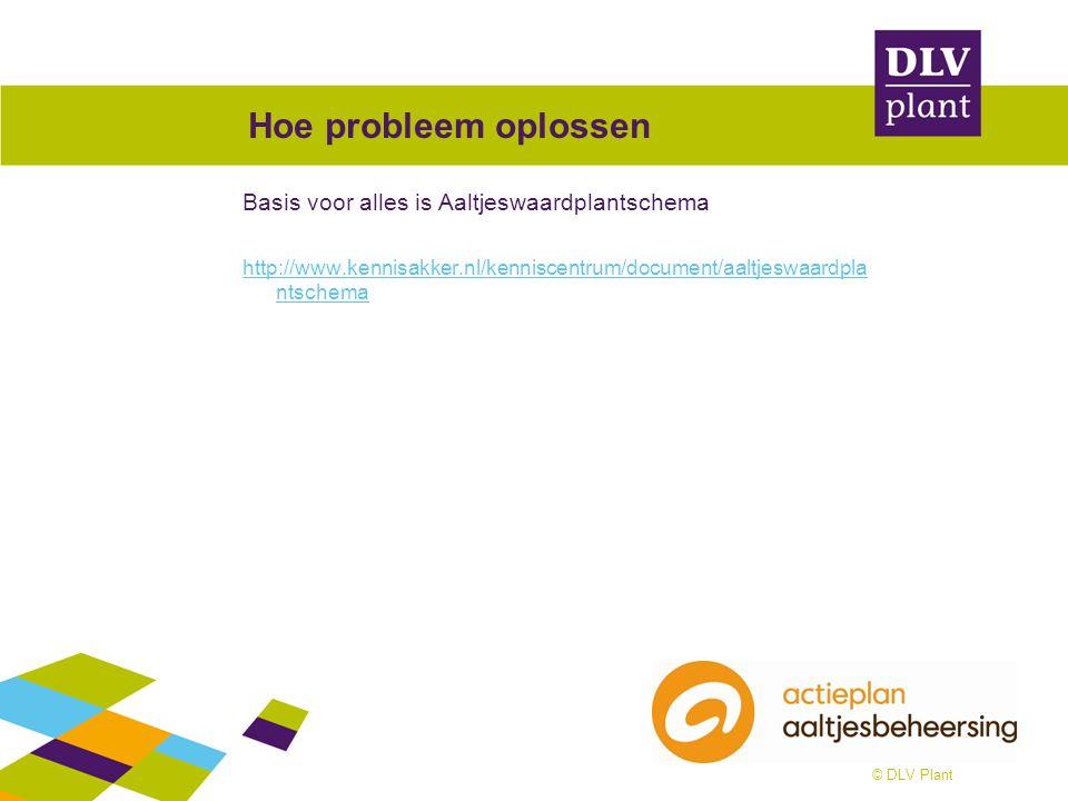 © DLV Plant Hoe probleem oplossen Basis voor alles is Aaltjeswaardplantschema http://www.kennisakker.nl/kenniscentrum/document/aaltjeswaardpla ntschem