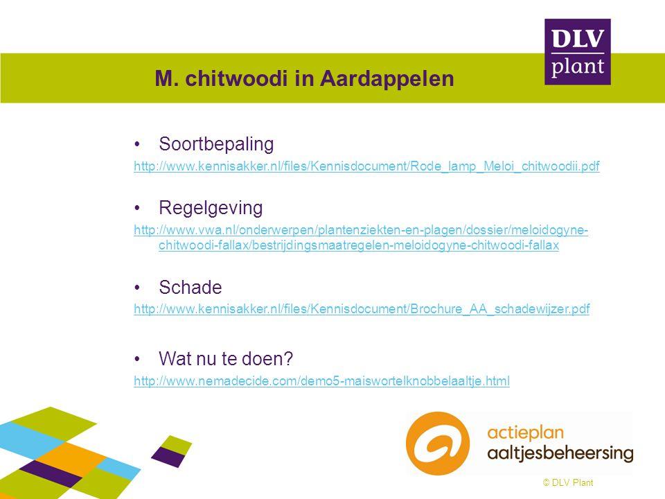 © DLV Plant M. chitwoodi in Aardappelen Soortbepaling http://www.kennisakker.nl/files/Kennisdocument/Rode_lamp_Meloi_chitwoodii.pdf Regelgeving http:/