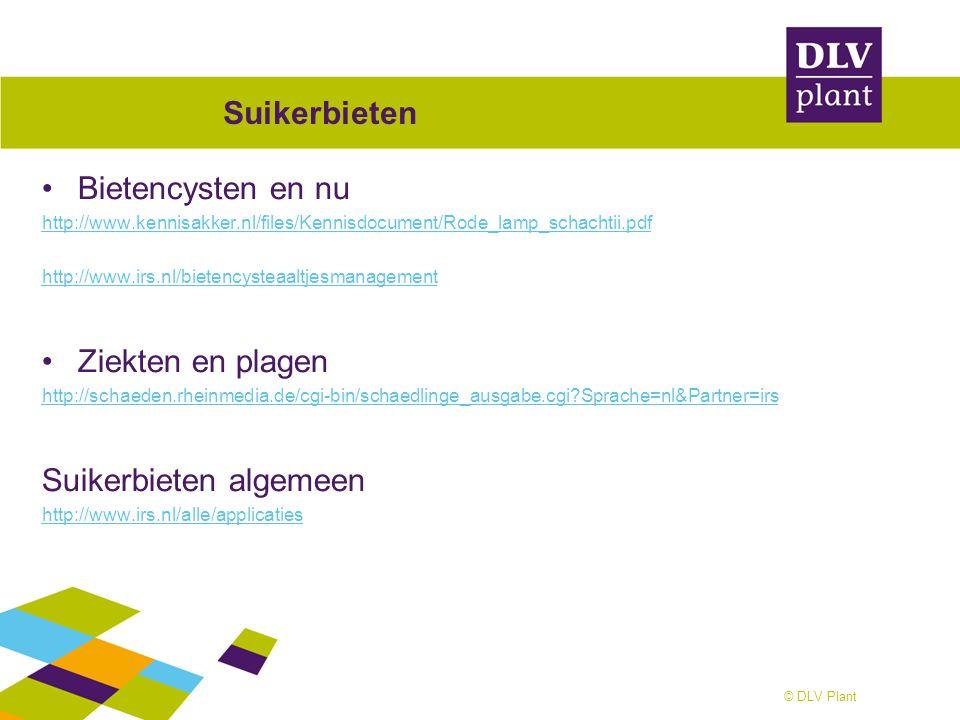 © DLV Plant Suikerbieten Bietencysten en nu http://www.kennisakker.nl/files/Kennisdocument/Rode_lamp_schachtii.pdf http://www.irs.nl/bietencysteaaltje