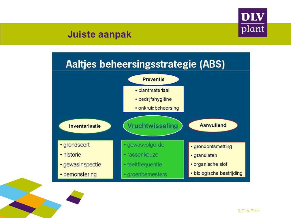 © DLV Plant Juiste aanpak