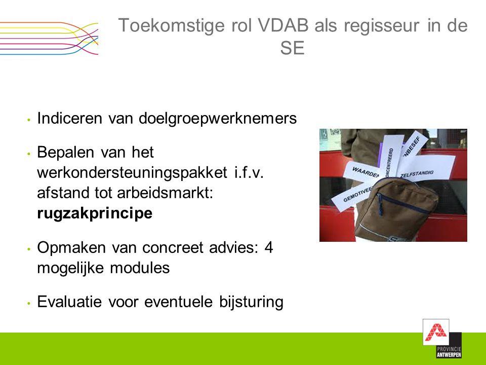 Toekomstige rol VDAB als regisseur in de SE Indiceren van doelgroepwerknemers Bepalen van het werkondersteuningspakket i.f.v. afstand tot arbeidsmarkt