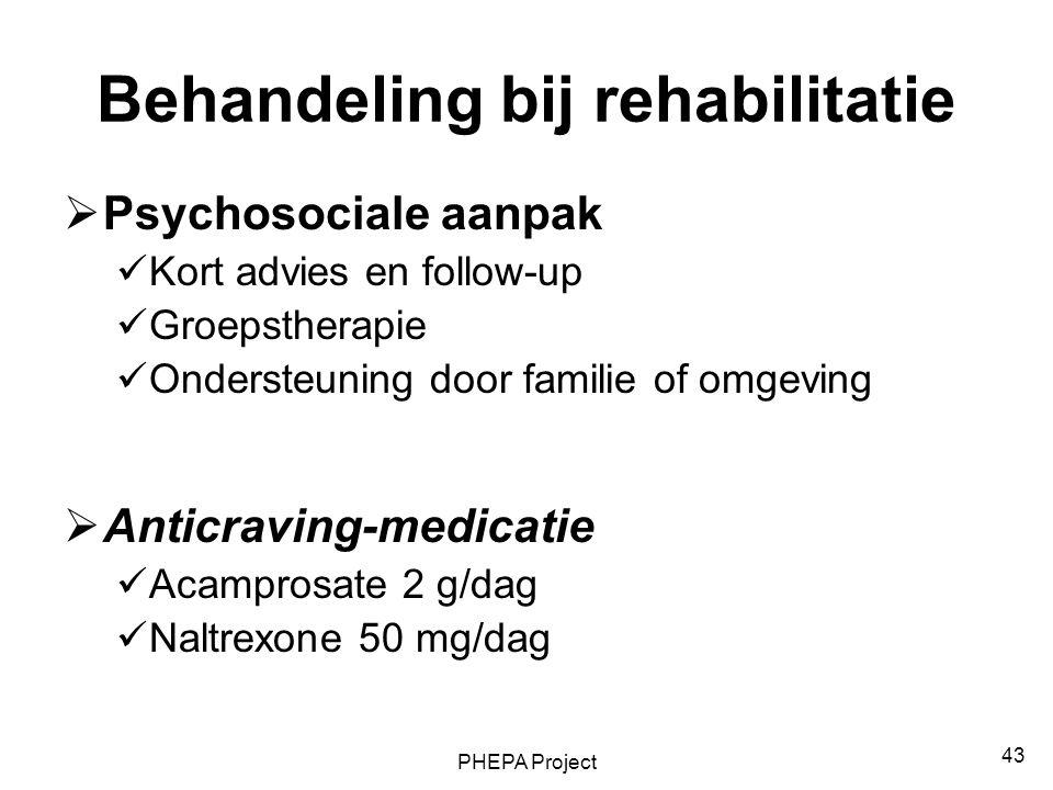 PHEPA Project 43 Behandeling bij rehabilitatie  Psychosociale aanpak Kort advies en follow-up Groepstherapie Ondersteuning door familie of omgeving 