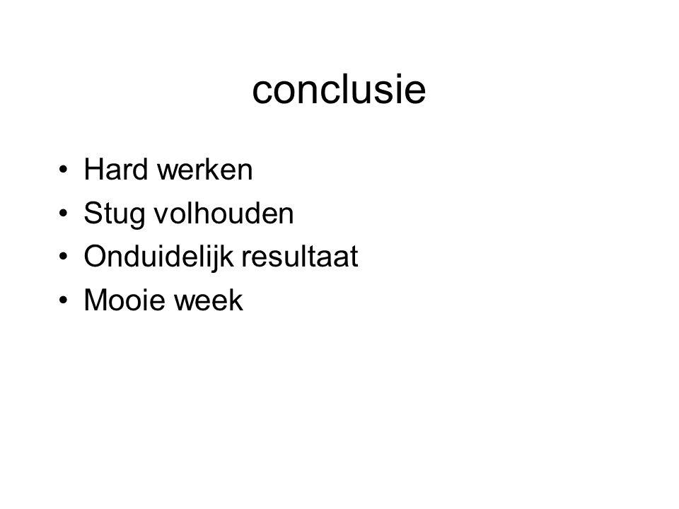 conclusie Hard werken Stug volhouden Onduidelijk resultaat Mooie week