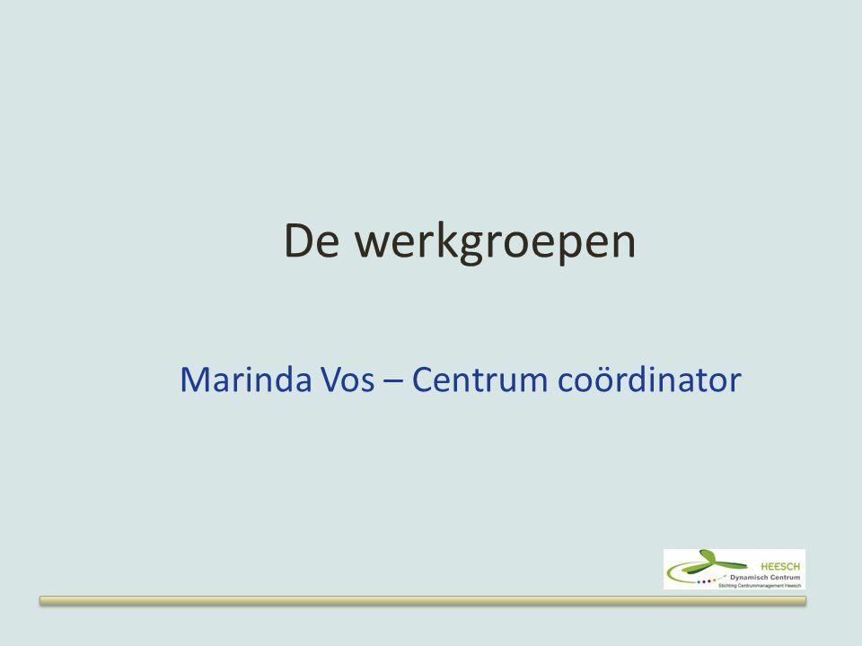 De werkgroepen Marinda Vos – Centrum coördinator
