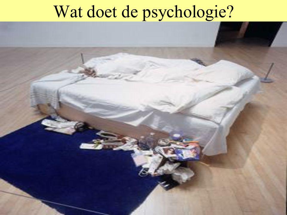 Wat doet de psychologie? Waar duisternis was, zal helderheid komen Daartoe moet het geheim opgespoord en opgelost worden Als het geheim aan het licht