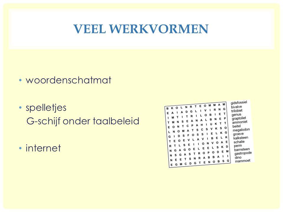 VEEL WERKVORMEN woordenschatmat spelletjes G-schijf onder taalbeleid internet
