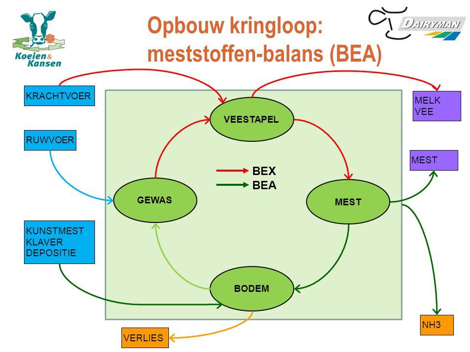 Opbouw kringloop: meststoffen-balans (BEA) VEESTAPEL MEST GEWAS BODEM MELK VEE MEST KRACHTVOER RUWVOER KUNSTMEST KLAVER DEPOSITIE NH3 BEX BEA VERLIES