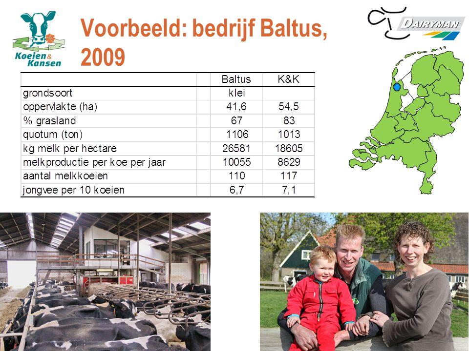 Voorbeeld: bedrijf Baltus, 2009