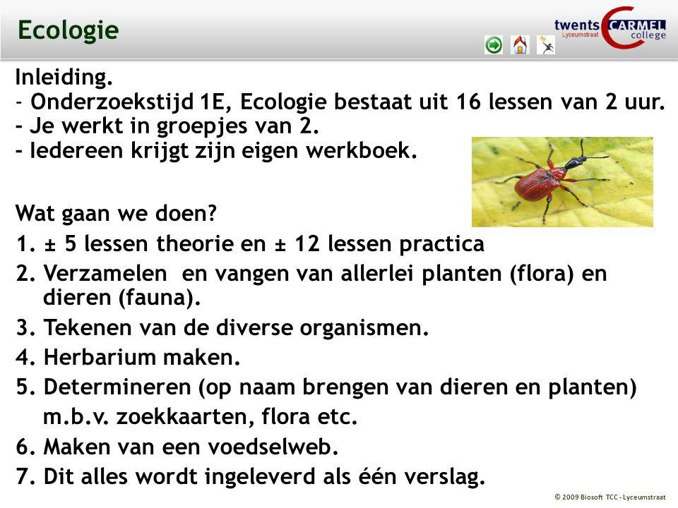 © 2009 Biosoft TCC - Lyceumstraat Ecologie Wat gaan we doen? 1. ± 5 lessen theorie en ± 12 lessen practica 2. Verzamelen en vangen van allerlei plante