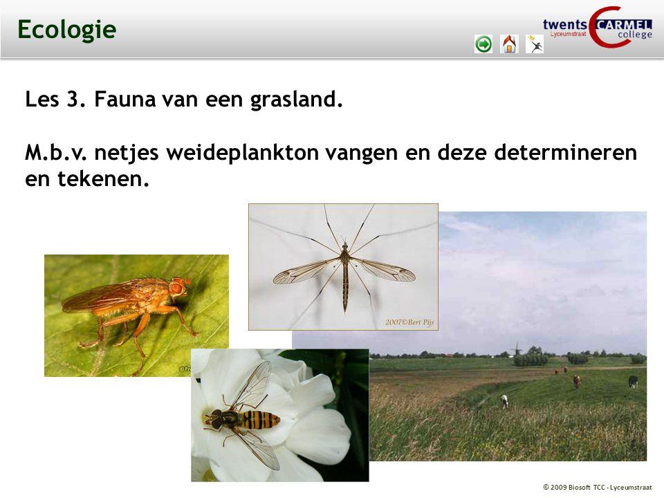 © 2009 Biosoft TCC - Lyceumstraat Ecologie Les 3. Fauna van een grasland. M.b.v. netjes weideplankton vangen en deze determineren en tekenen.