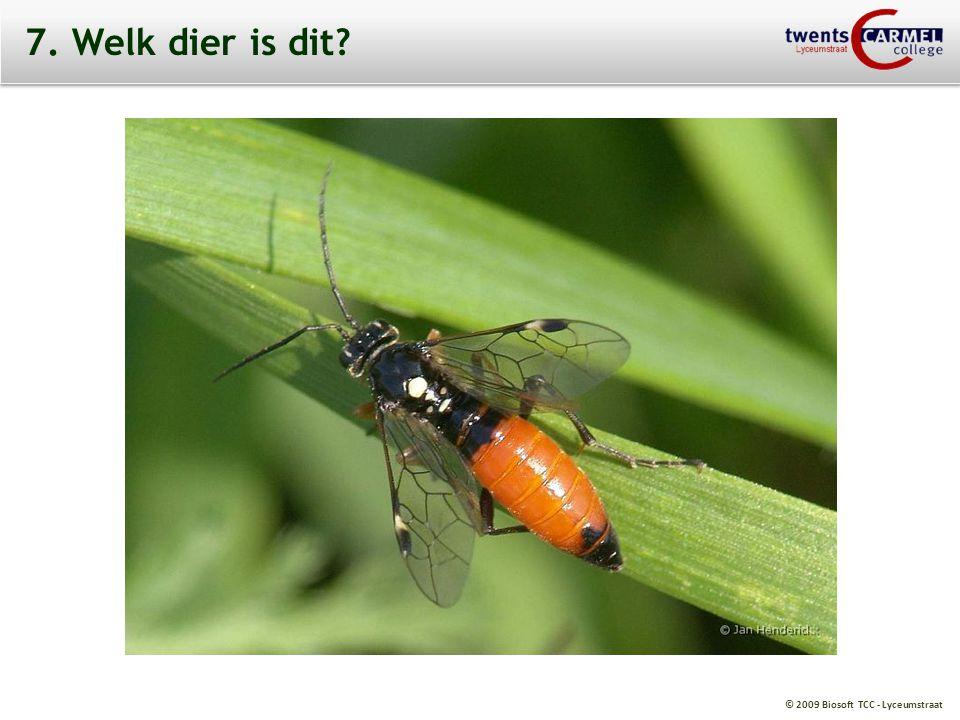 © 2009 Biosoft TCC - Lyceumstraat 7. Welk dier is dit?